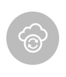 Google Cloud Data Engineer Professional